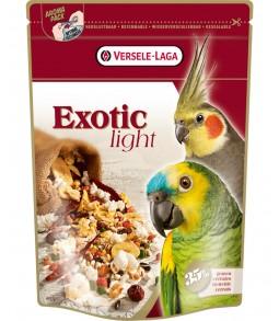 Papagaios e Caturras Exotic...