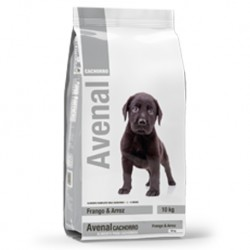Avenal Puppy