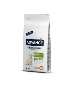 ADVANCE MAXI JUNIOR